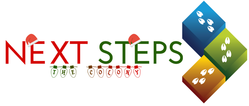 Next Steps Christmas